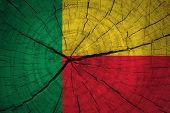 Benin Flag.
