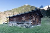 old wooden timber hut on austrian alp in fall meadow