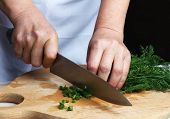 Chopping green dill