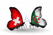 Two Butterflies With Flags On Wings As Symbol Of Relations Switzerland And Algeria
