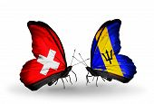 Two Butterflies With Flags On Wings As Symbol Of Relations Switzerland And Barbados