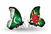 Two Butterflies With Flags On Wings As Symbol Of Relations Pakistan And Dominica