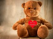 image of teddy  - cute teddy bear for valentine - JPG