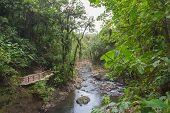 stock photo of rainforest  - River flows in the rainforest of Costa Rica - JPG