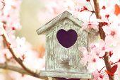 pic of nesting box  - Decorative nesting box on bright background - JPG