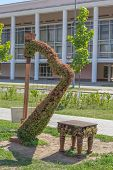 picture of stool  - green topiary statue of a harp with stool - JPG