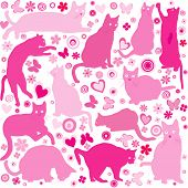 image of baby cat  - Baby girls background with pink cats - JPG