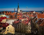 picture of olaf  - Aerial View of Tallinn Old Town and Olaviste Church from Toompea Hill Tallinn Estonia - JPG