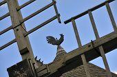 Weathercock on vintage windmill