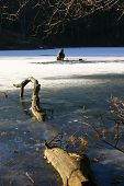picture of bluegill  - a man ice fishing out on the lake in mid winter - JPG