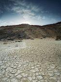 Loam Desert