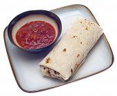 Delicious Burrito With Salsa