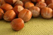 Hazel Nuts On A Mat