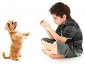 Boy Shooting Photos Of His Dog With Digital Camera
