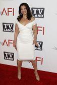 LOS ANGELES - JUN 9:  Fran Drescher arriving at the 39th AFI Life Achievement Award Honoring Morgan