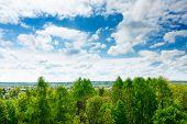 Floresta de nuvens