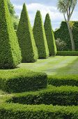 English Boxwood Garden Design