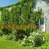 Постер, плакат: Сады замка Tullynally графство Уэстмит Ирландия