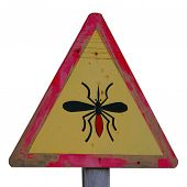 Yellow Wooden Midge Sign