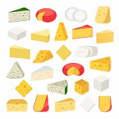 Vector Different Types Of Cheese Detailed Icons poster