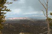 Ponderosa Canyon At Bryce Park