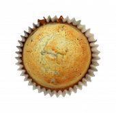 Blueberry Muffin Homemade Single