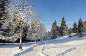 Kramerplateauweg Nearby Garmisch-Partenkirchen