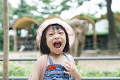 Cute Little Girl Watching Animals At The Zoo On Warm And Sunny Summer Day. Children Watching Zoo Ani poster