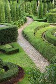 Nature Path Through In The Garden