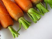 Fresh Clean Carrots On A White Wooden Table. Background Of Fresh Vegetables Top View. Fresh Bunch Of poster