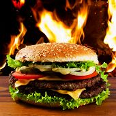 picture of beef-burger  - Hamburger  - JPG