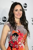 PASADENA - JAN 10: Madeleine Stowe at the Disney ABC Television Group 2013 TCA Winter Press Tour at
