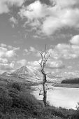 Errigal Mountains And Countryside In County Donegal