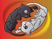 Fighting Cat Illustration