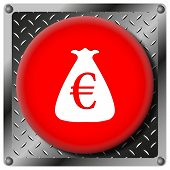Euro Sack Metallic Icon