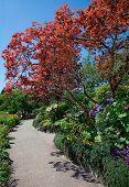 Walkway at Butchart Gardens, Central Saanish, British Columbia, Canada