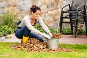Smiling woman stuffing dry leaves into bucket autumn garden housework
