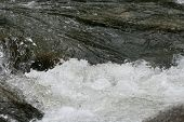 Whitewater Rapids in the Intag