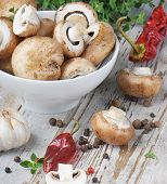 Mushrooms And Spices