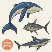 Sea Animals Set 2