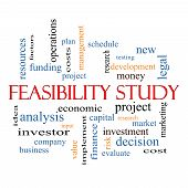 Feasibility Study Word Cloud Concept