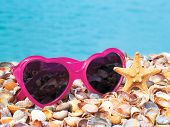 Glasses And Shells On The Sea Sand
