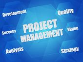 Project Management And Business Concept Words In Hexagons