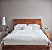 pic of house plant  - Beautiful Clean and Modern Bedroom with empty wall to add some text - JPG