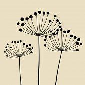 Floral Elements for design, dandelions