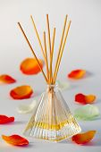 stock photo of diffusion  - A bottle of aroma diffuser for room - JPG
