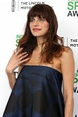 LOS ANGELES - MAR 1:  Lake Bell at the Film Independent Spirit Awards at Tent on the Beach on March