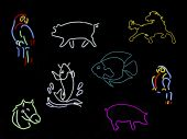 Neon Animal Signs