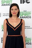 LOS ANGELES - MAR 1:  Aubrey Plaza at the Film Independent Spirit Awards at Tent on the Beach on March 1, 2014 in Santa Monica, CA