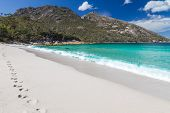 A photography of Wineglass Bay in Tasmania